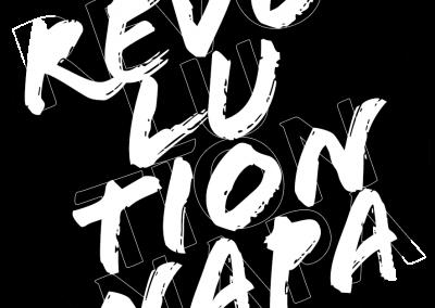 Revolution 1981